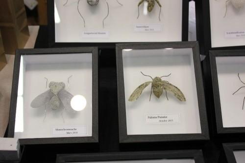 Insectes au crochet d'Olivia Ferrand - Mon Souk / Crocheted insects by Olivia Ferrand - Mon Souk.