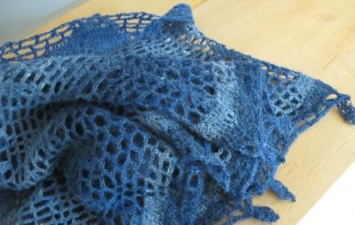 euphorbia bleu 5